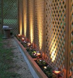 indirect light garden screen