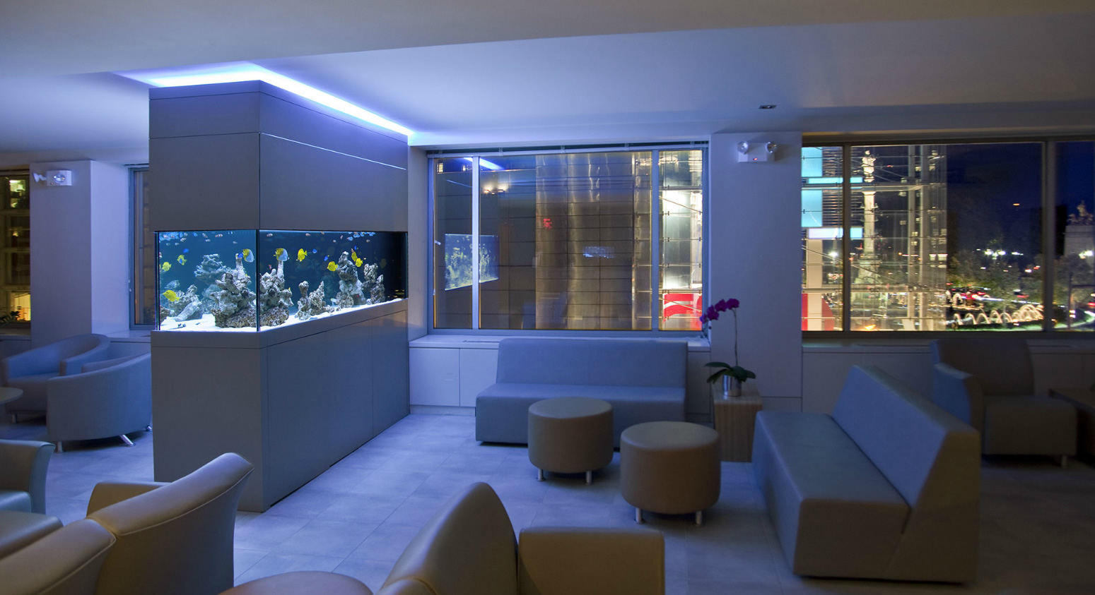 picture of a fish tank in a downtown apartment